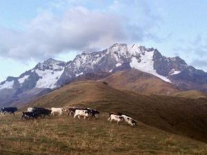Chicon Glacier Hike
