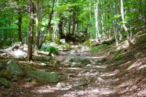 Red Hill Trail New Hampshire