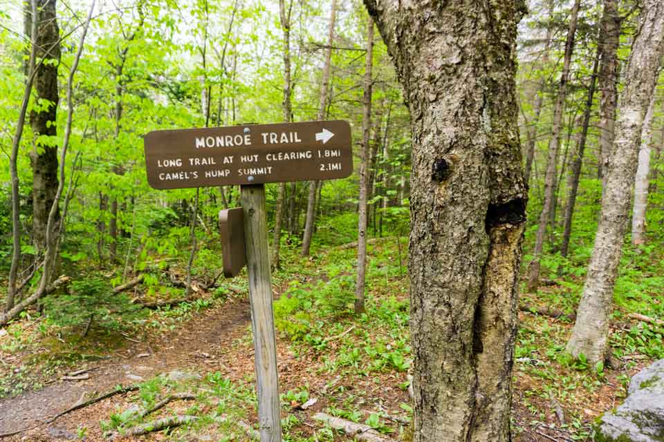 Monroe Trail up Camels Hump