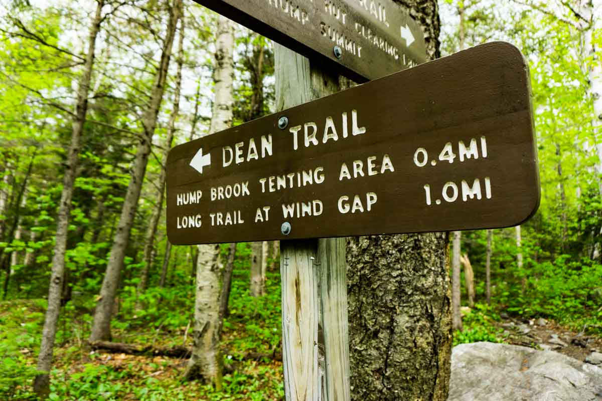 Dean Trail up Camels Hump