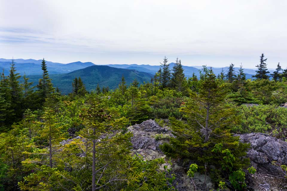 View of White Mountains from Mt Parker