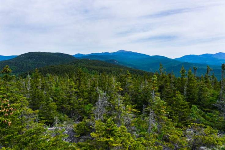 View of Mt. Washington from Mt. Parker