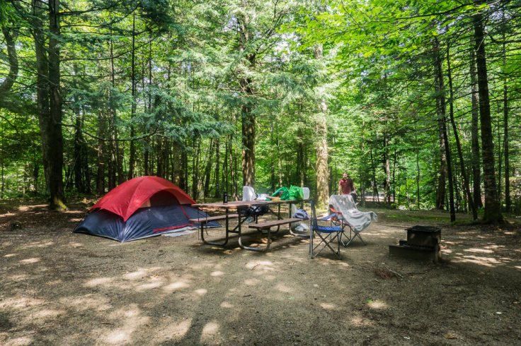 Campsite at Wild River Campground with picnic table and fire pit